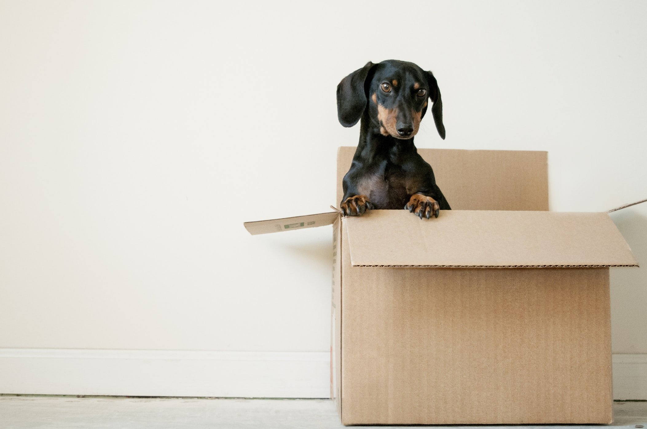 How To Pack Moving Boxes Efficiently